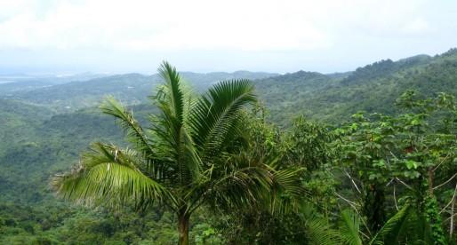 San Juan, PR: Lush Rainforests and The Old City
