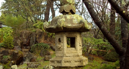 A Hidden Sanctuary in SF: The Japanese Tea Garden