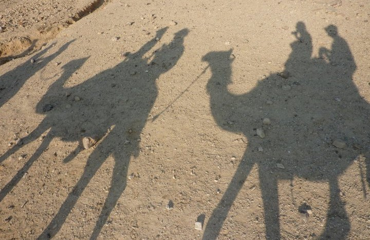 Into the Negev: My Donkey Hates Me