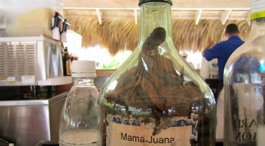 M is for MAMAJUANA: DR's Most Potent Drink