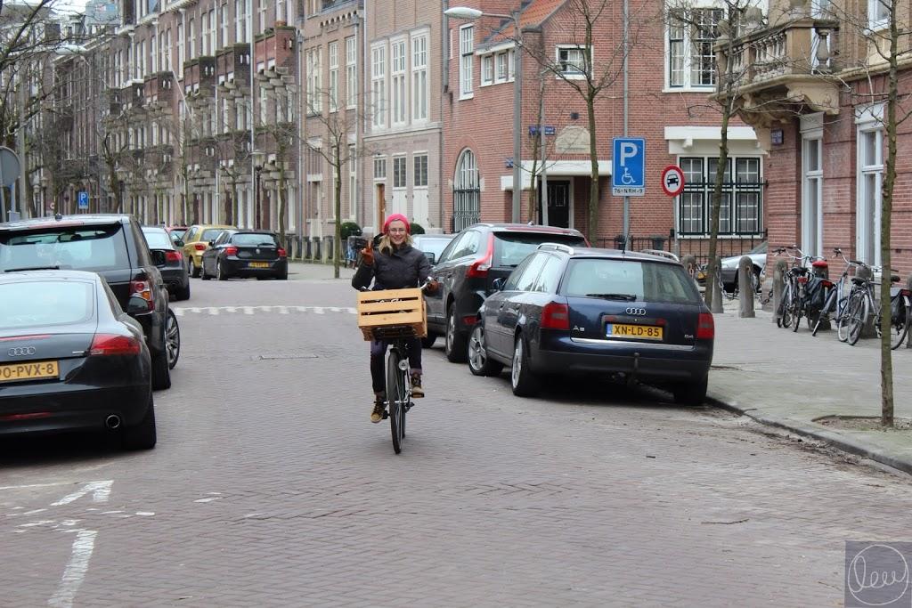 amsterdam-biking
