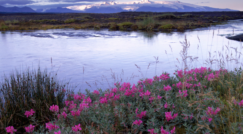 10 Things to do in Iceland: The Land of Fire and Ice