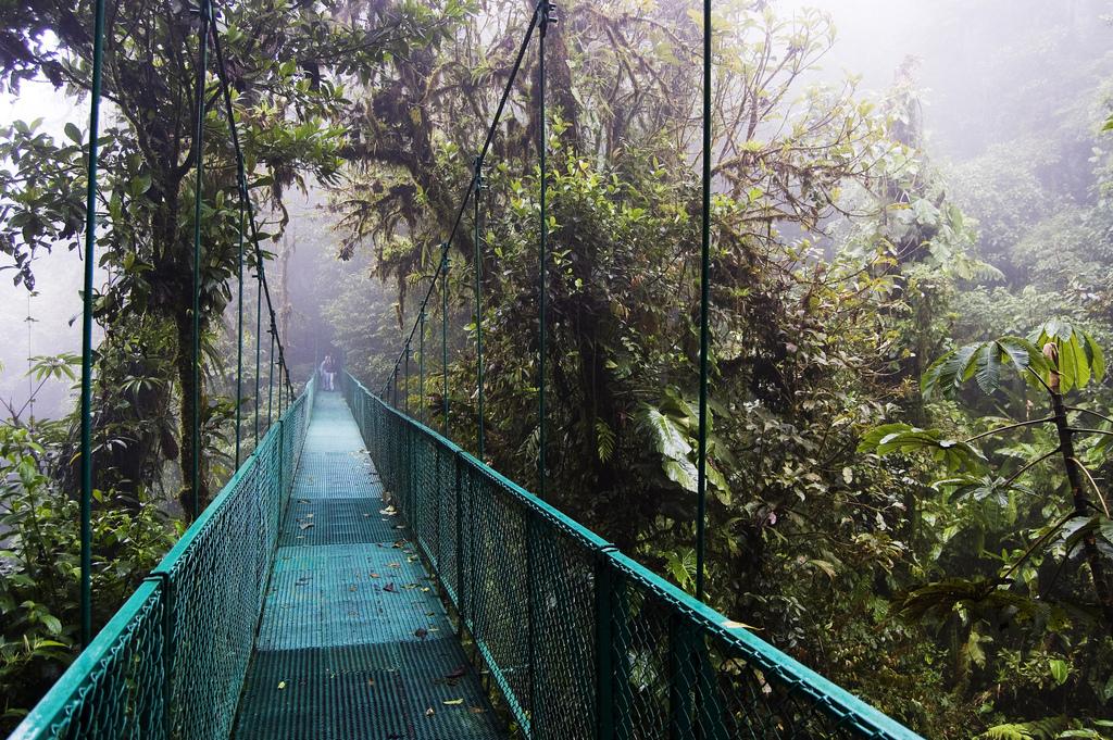 monte verde hanging bridge costa rica