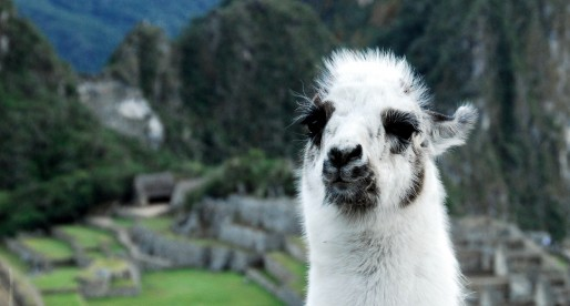 Best of Peru (After You've Hiked Machu Picchu)