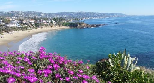 My Birthday in Sunny Southern California