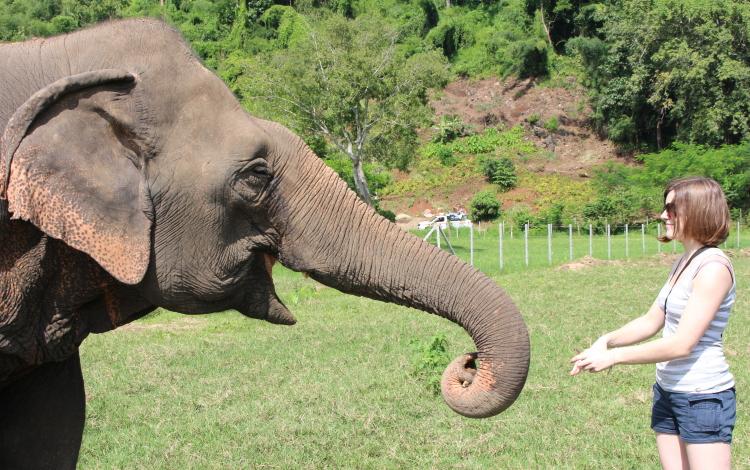 ElephantNaturePark
