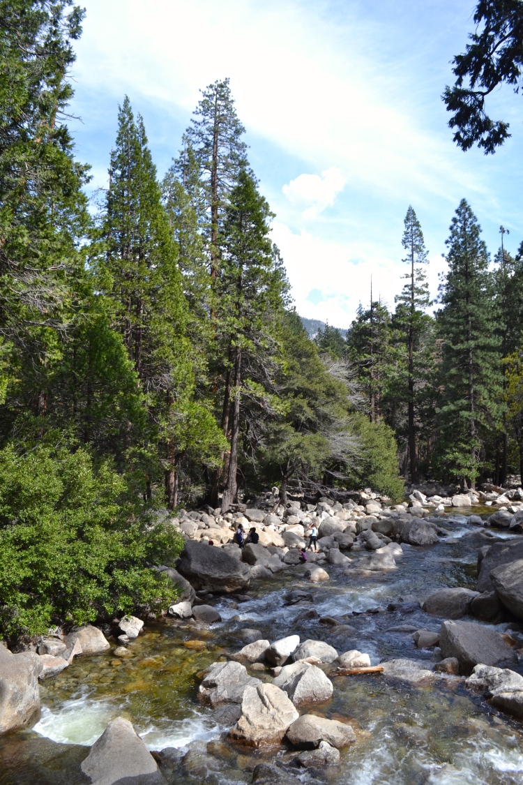 yosemite in one day