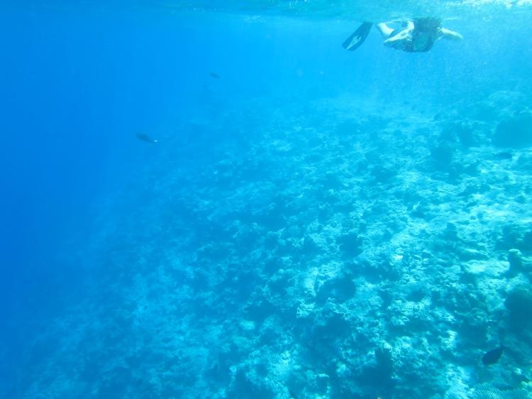 maldives tips
