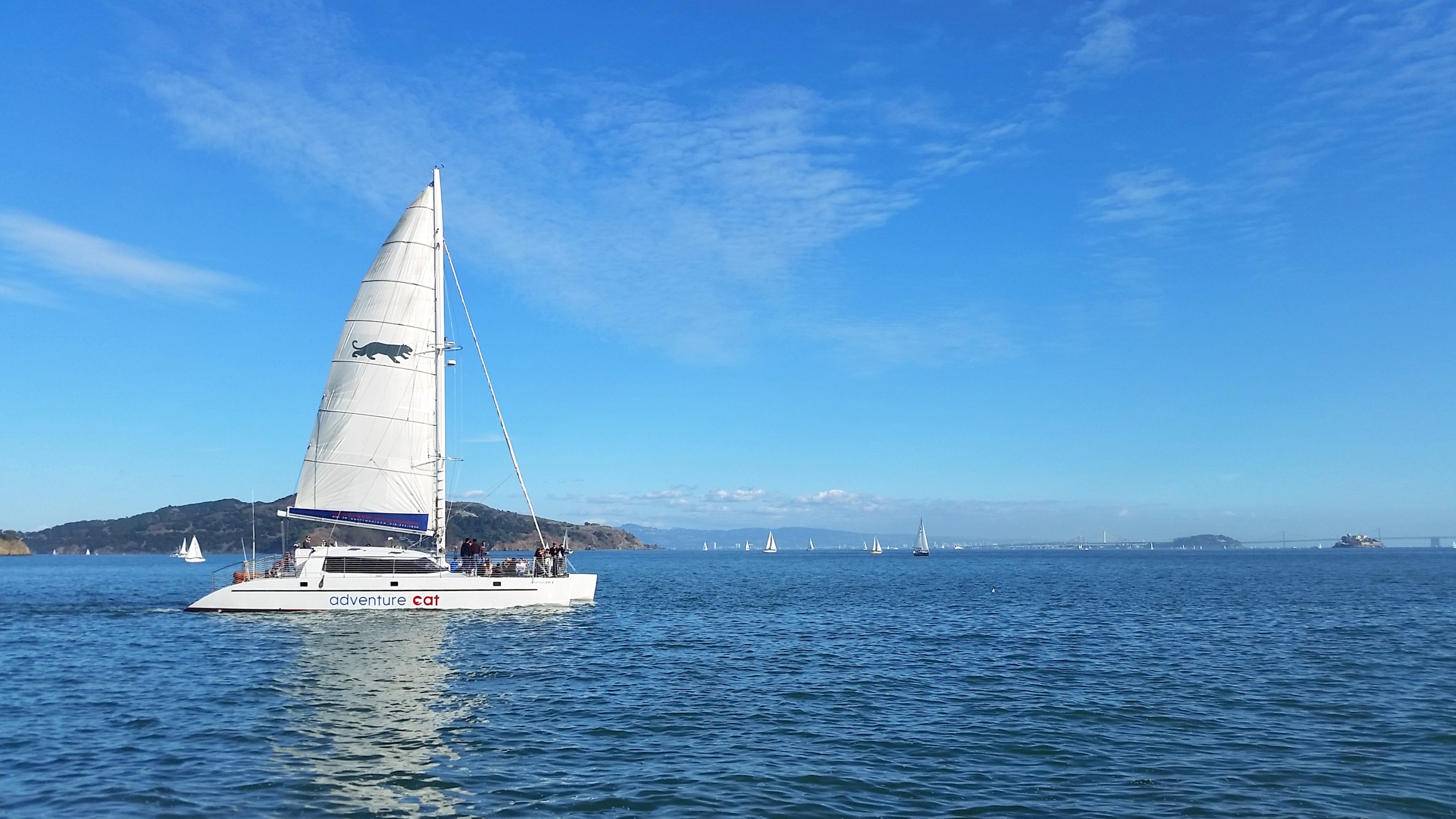 sailboat in sausalito
