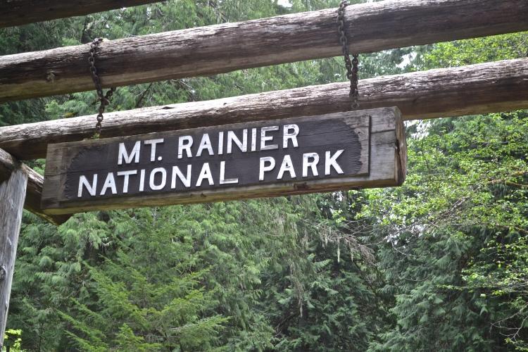 mt rainier day trip
