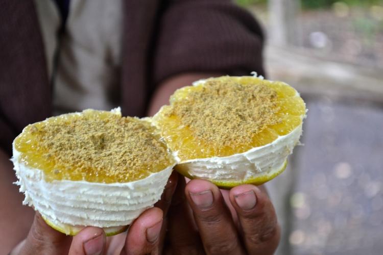 orange with pumpkin seeds guatemala