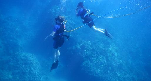 Get Wet in Hawaii: 6 Must-Do Water Activities