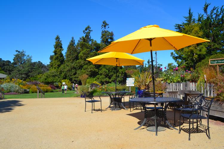 mendocino california botanical gardens