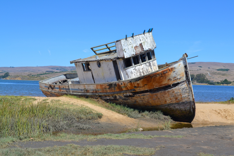 where to find point reyes shipwreck