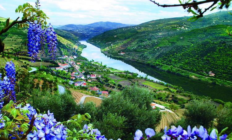 Where to Stop on a River Cruise: Douro River Valley, Portugal | www.apassionandapassport.com
