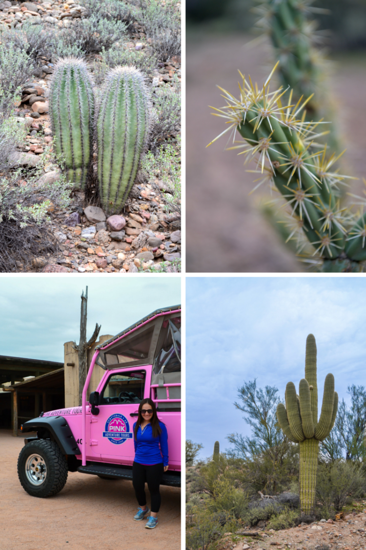 A Long Weekend in Scottsdale Arizona: What to See, What to Do, What to Eat, Where to Stay, and How to Get Around | www.apassionandapassport.com