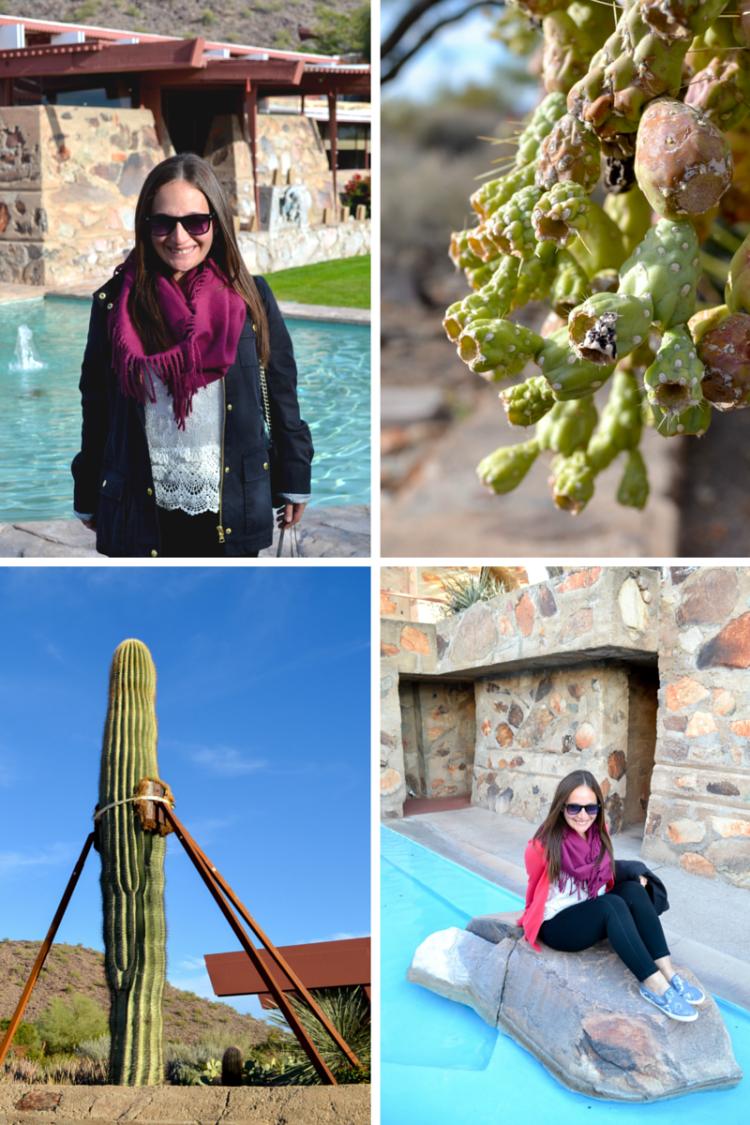 Things to do in Scottsdale, Arizona