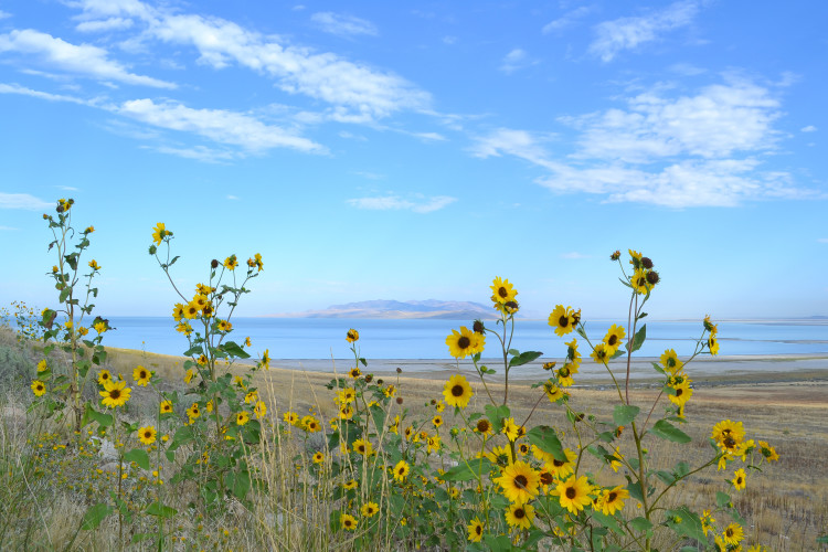 Antelope Island State Park srcset=