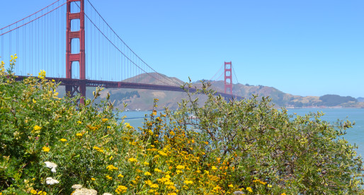 Best Places to Photograph the Golden Gate Bridge