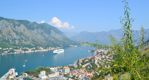 One Day in Kotor, Montenegro