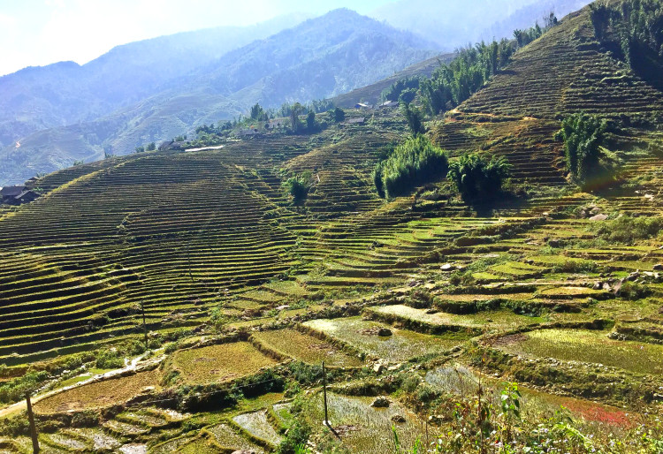 Vietnam on your bucket list? It's definitely on mine after reading this article! I swear this is the absolute BEST itinerary for two weeks in Vietnam!