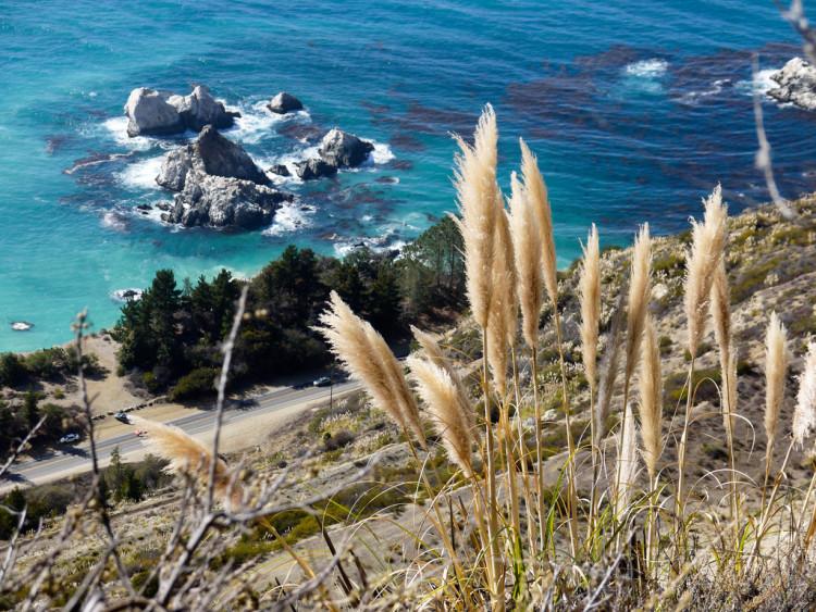 Big Sur California Coast Road Trip