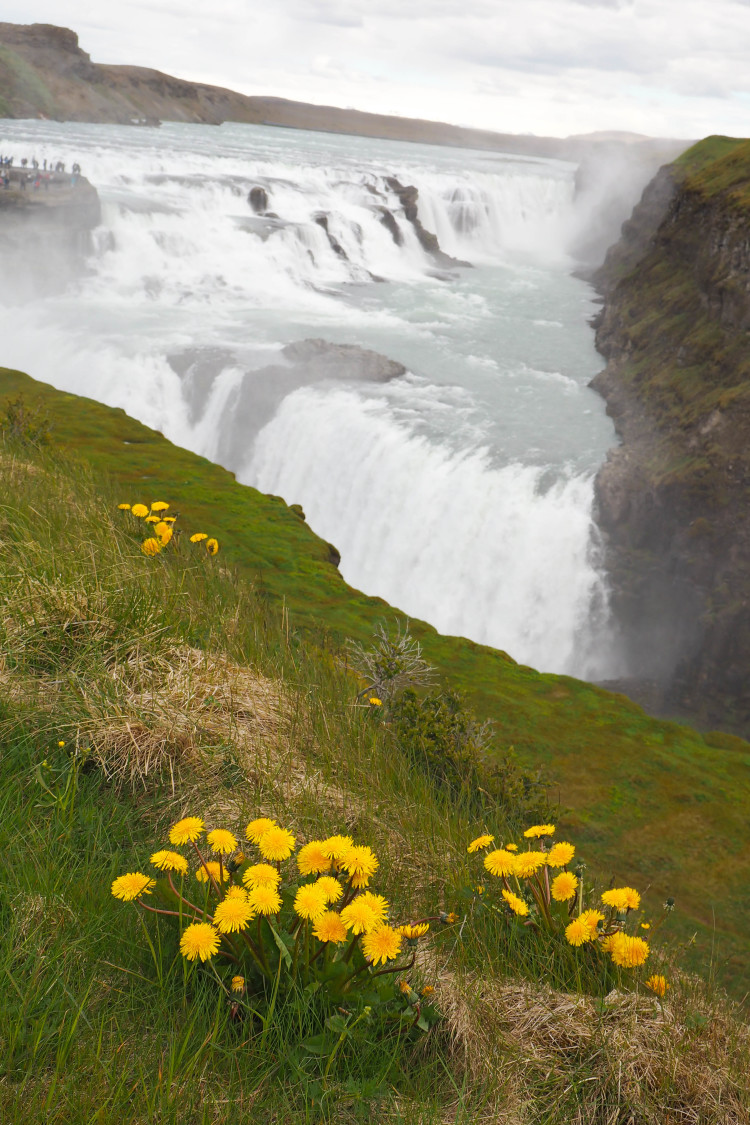 Stops on the Golden Circle in Iceland - the day tour you don't want to miss from Reykjavik. Definitely should be on your Iceland bucket list! So many gorgeous stops!