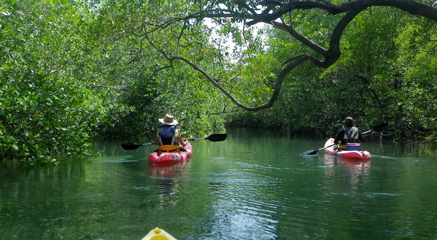 15+ Things To Do in Costa Rica: Must-Do Activities