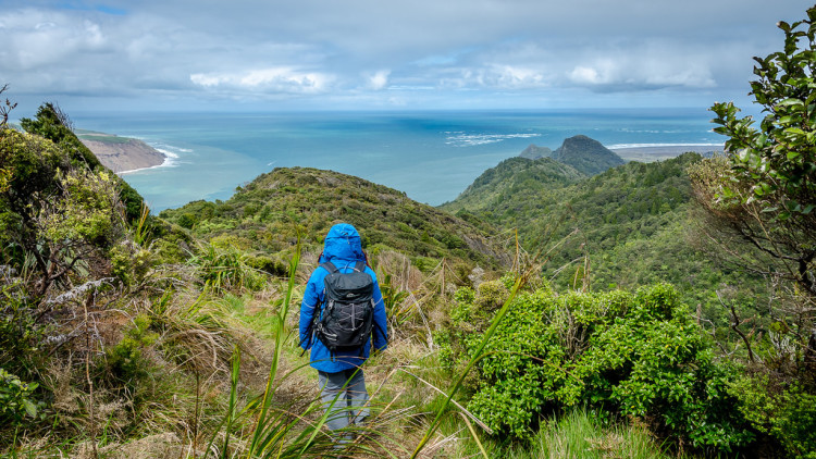Waitakere Ranges Auckland