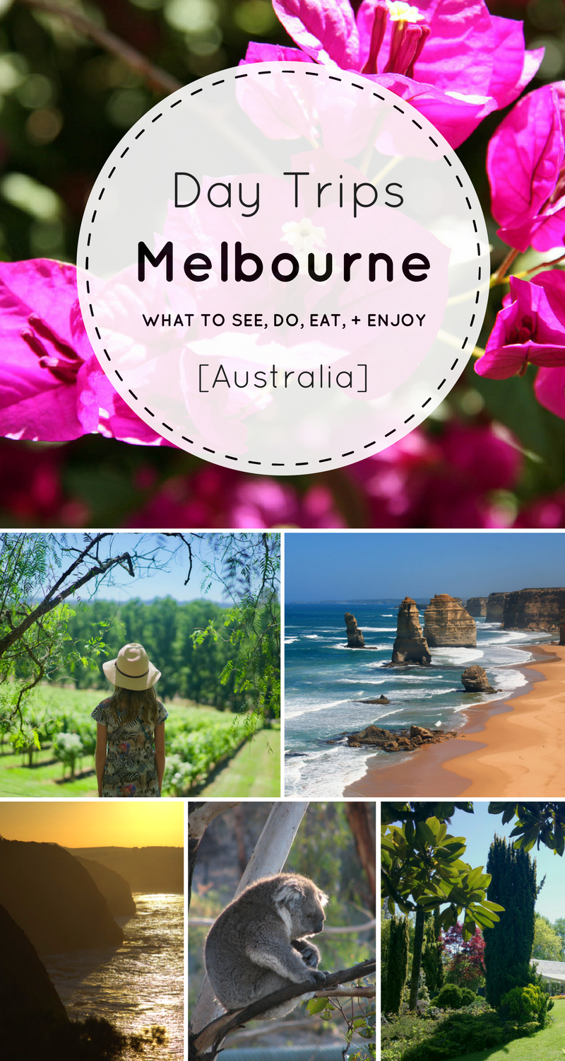 Heading to Australia soon and looking for the best day trips from Melbourne?! Use this guide to help plan a wonderful long weekend in Melbourne filled will all the highlights and day trips!