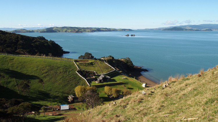 Looking for day trips from Auckland New Zealand? You're in the right place! There's so many wonderful places to see from Auckland!
