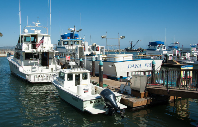 50 most beautiful places in california itinerary inspiration for Dana point harbor fishing