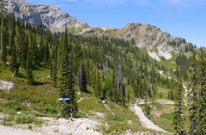 10+ Unforgettable Things To Do In Fernie, BC (During the Summer)