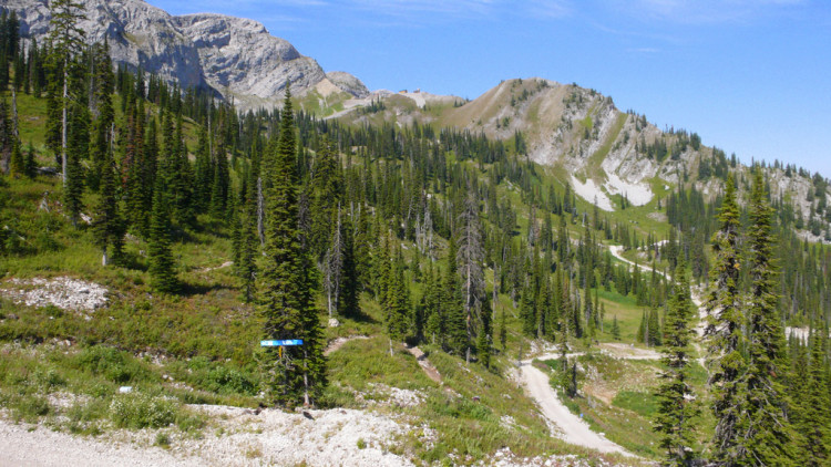 things to do in Fernie during the summer
