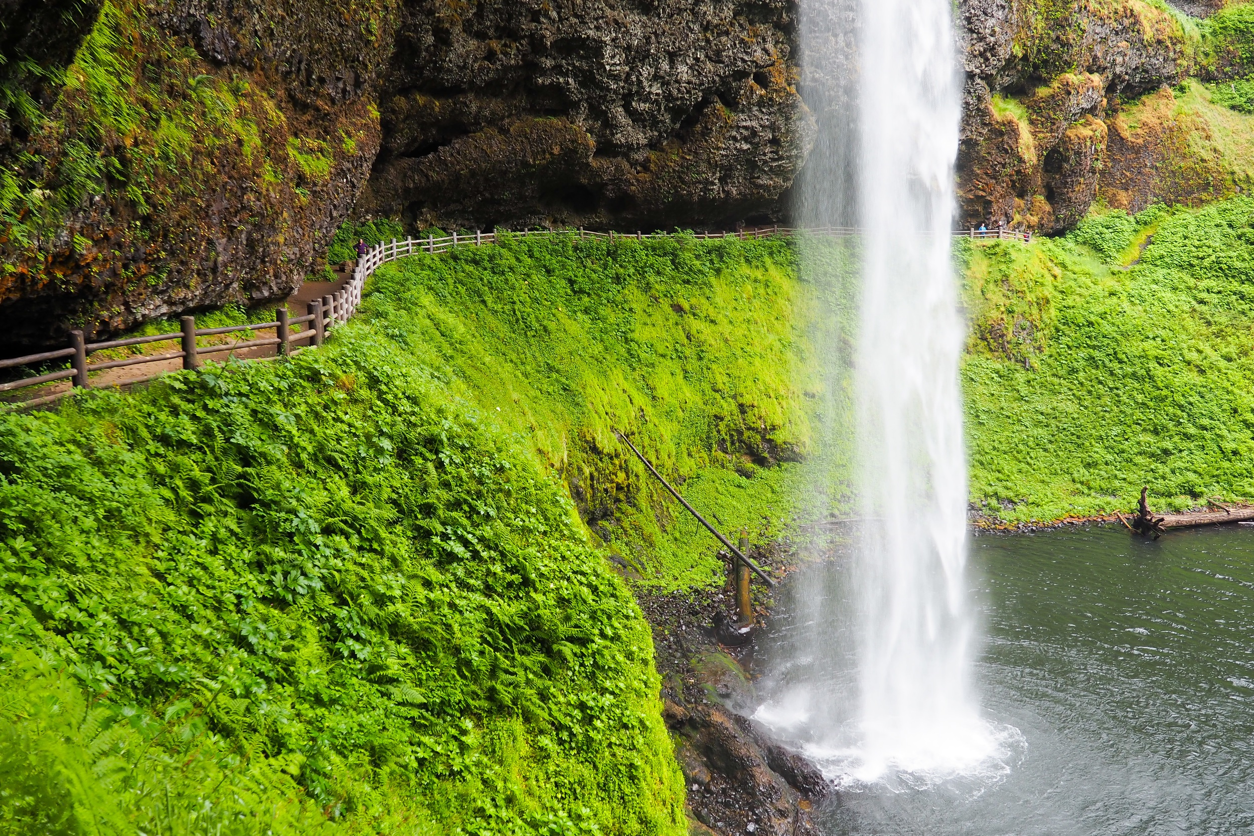 Planning a trip to Oregon in the near future? Check out this Portland itinerary, full of great foodie spots, waterfall hikes, and vista points! See all the highlights in 3 days in Portland!