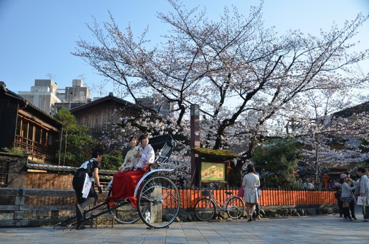 Planning a trip and confused about the best month to visit Japan?! Keep on reading, because I'll not only be dishing out info on when to visit Japan, but when to avoid the crowds, best times to see those beloved cherry blossoms, and when you can get the best bang for your buck.