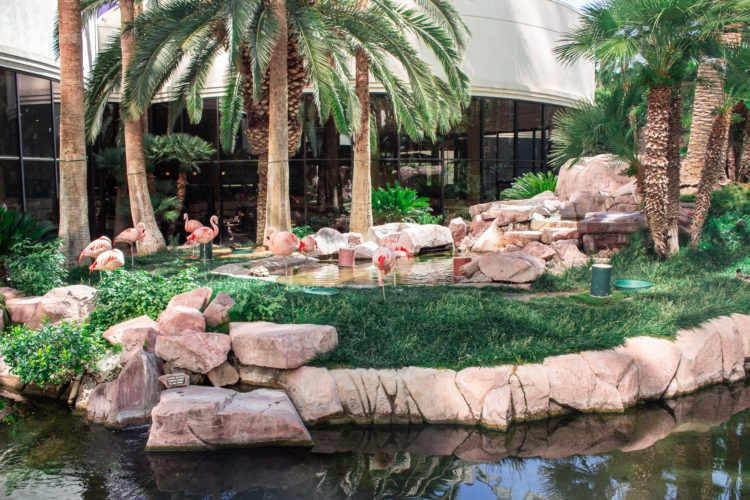Headed to Las Vegas and looking for the best 3 day Las Vegas itinerary? Keep on reading for opulent hotels, sugary snacks, and luxurious spa treatments. See, it's not all kitschy casinos and high-cash table games!