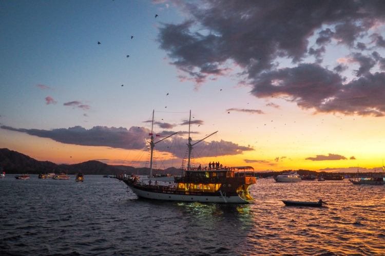 Headed off to Komodo National Park and looking for the best Komodo island tour package? Here you'll find a complete guide - everything you need to know!
