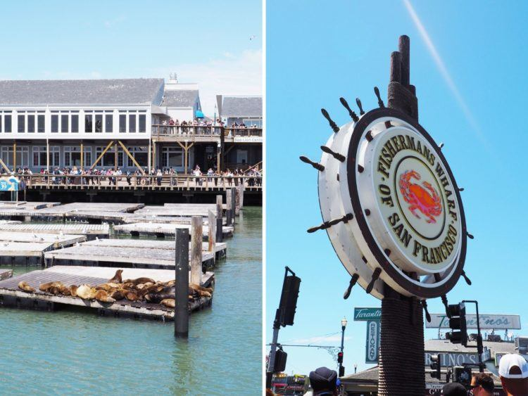 Looking for the perfect San Francisco itinerary? Keep reading for the ultimate 3 days in San Francisco! ALL MY FAVORITE SPOTS!