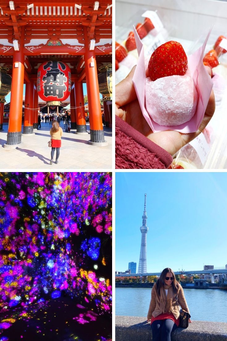 2019 Year in Review - Tokyo