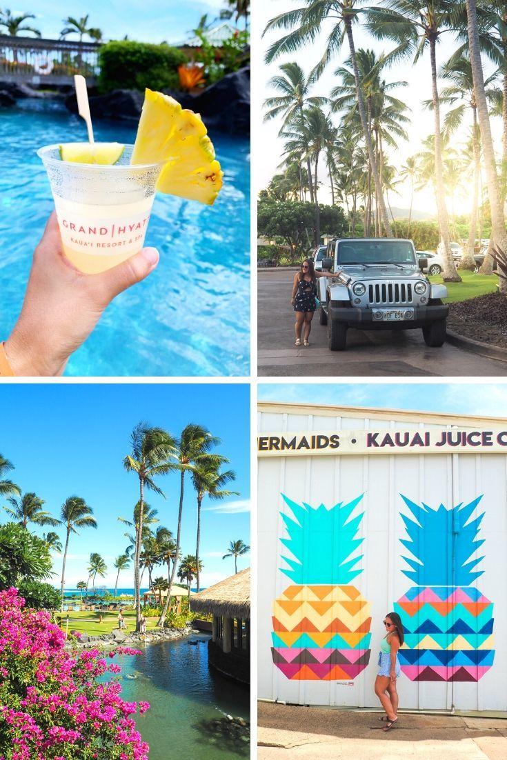 2019 Year in Review - Kauai
