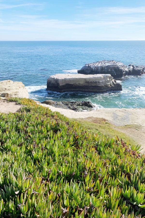The BEST 75 Pacific Coast Highway Stops: All my Favorite Places on the PCH! FULL Pacific Coast Highway road trip itinerary guide!