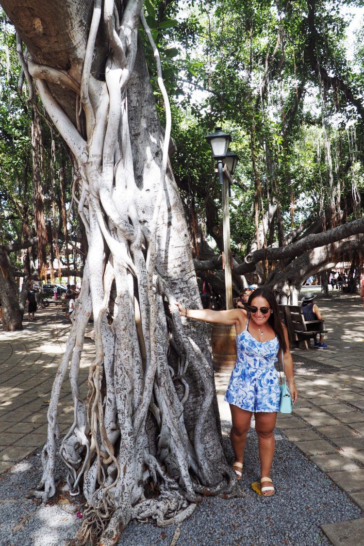 The Ultimate Hawaii Bucket List: 200 Super Fun Things to do in Hawaii