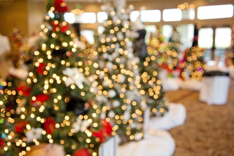 Looking for the best places to spend Christmas in California? These Christmas vacations in California are full of holiday spirit!