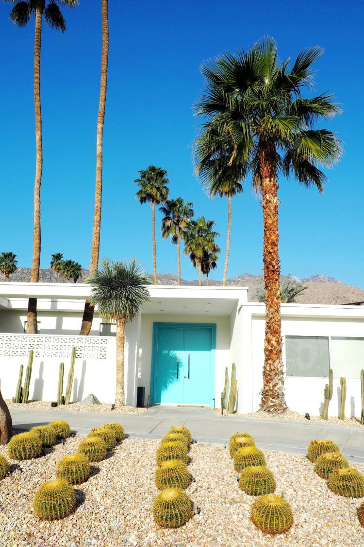 Palm Springs Door Tour: That Pink Door and All My Other Favorites