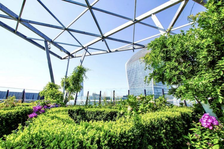 One day in London itinerary -- sky garden